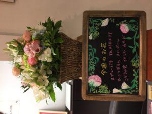 今週(4月22日〜)のお花