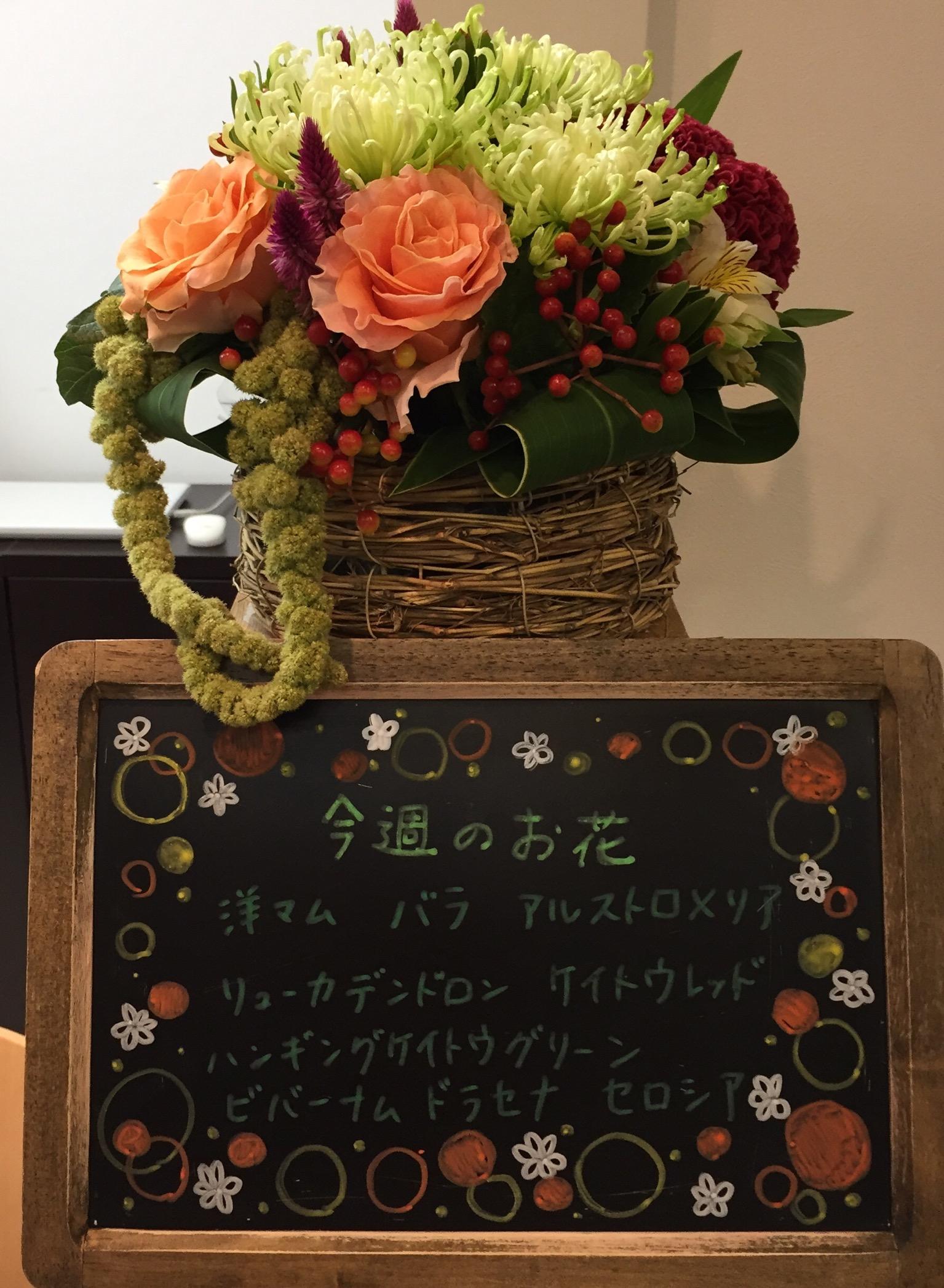 今週(7月29日〜)のお花