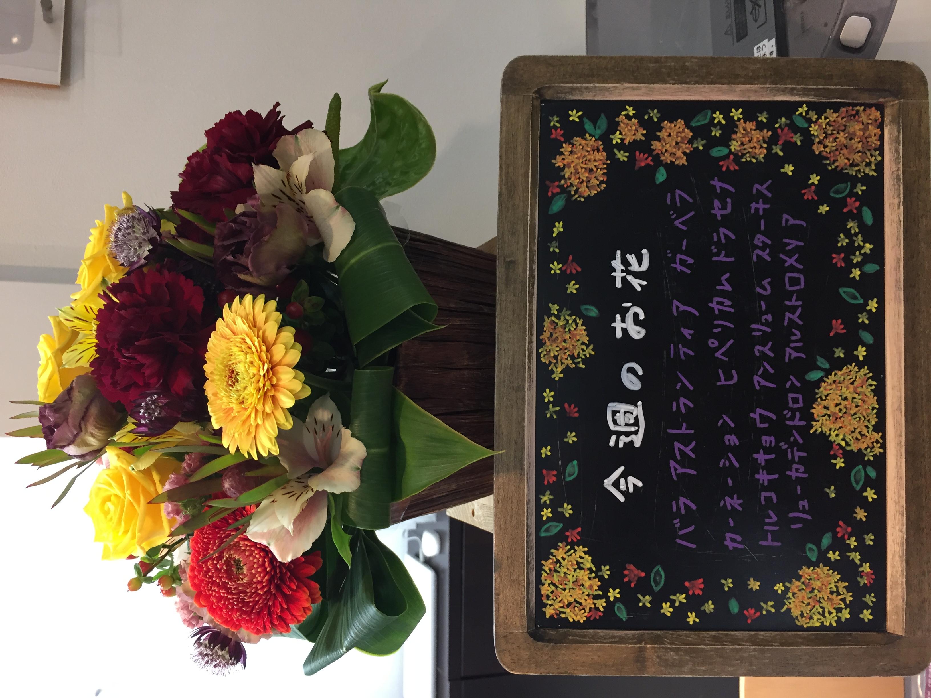 今週(11月5日〜)のお花