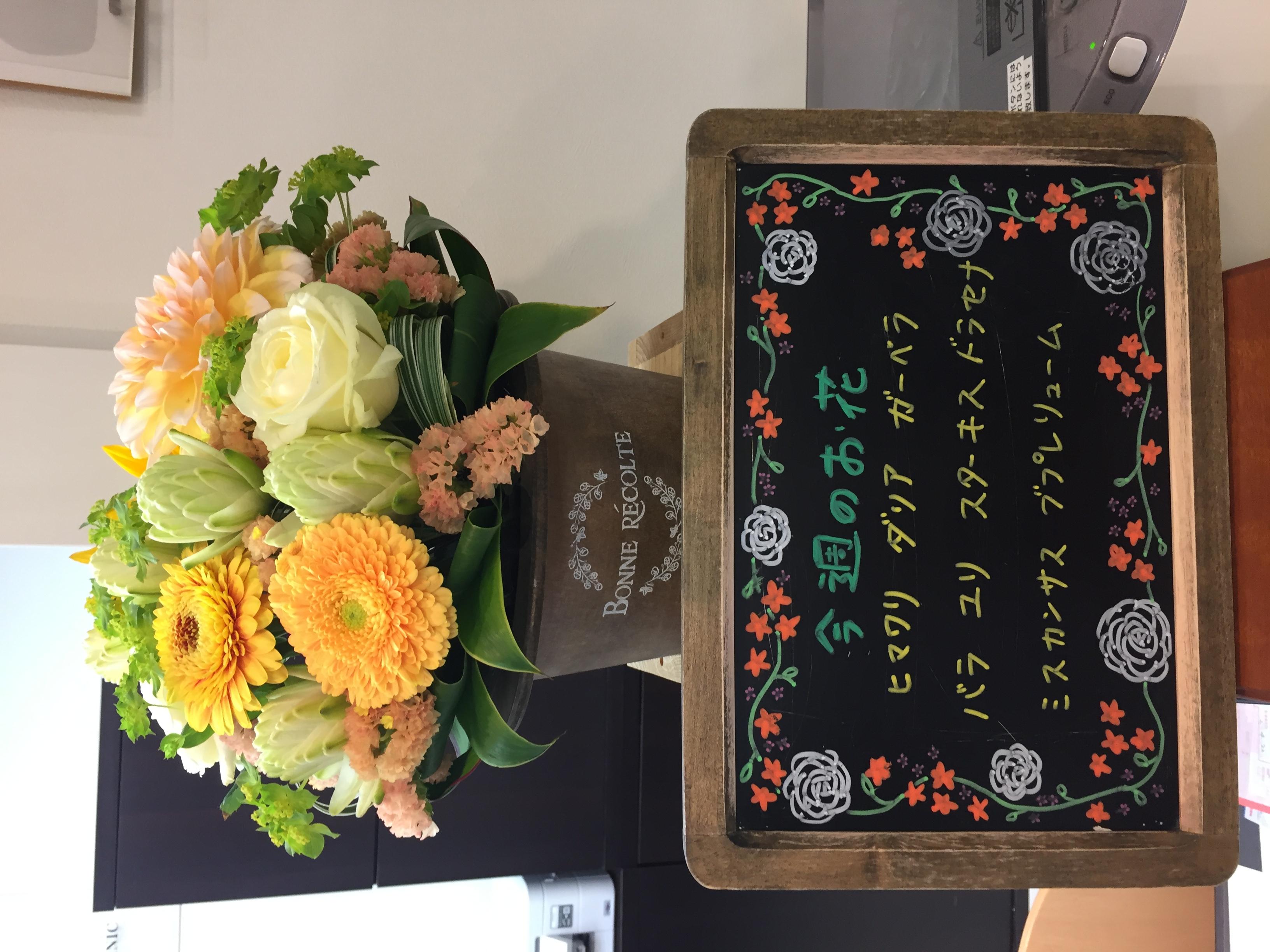 今週(4月20日〜)のお花