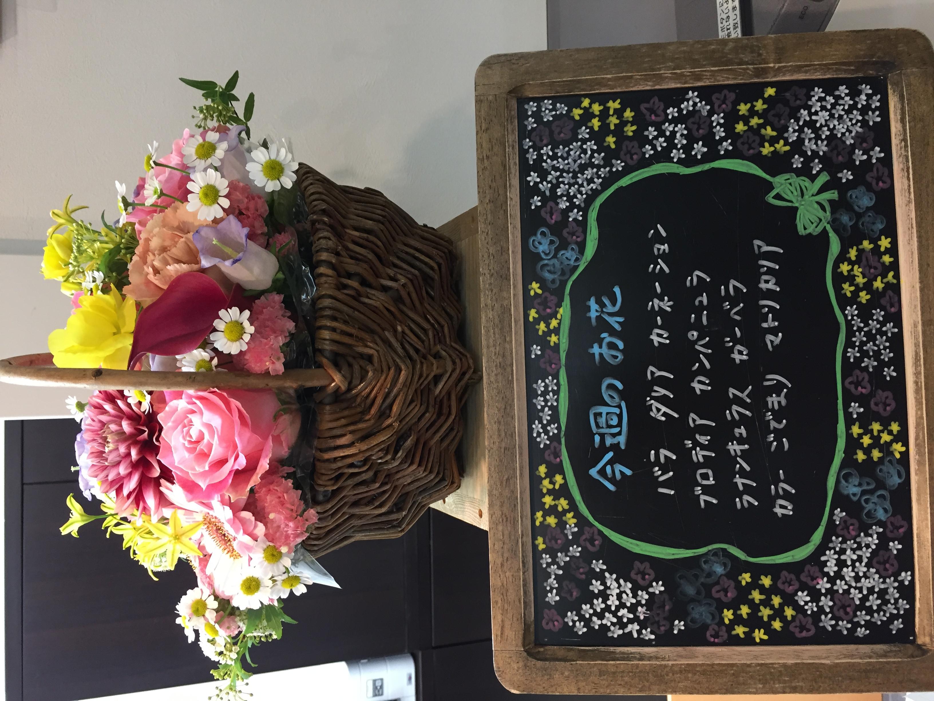 今週(4月6日〜)のお花