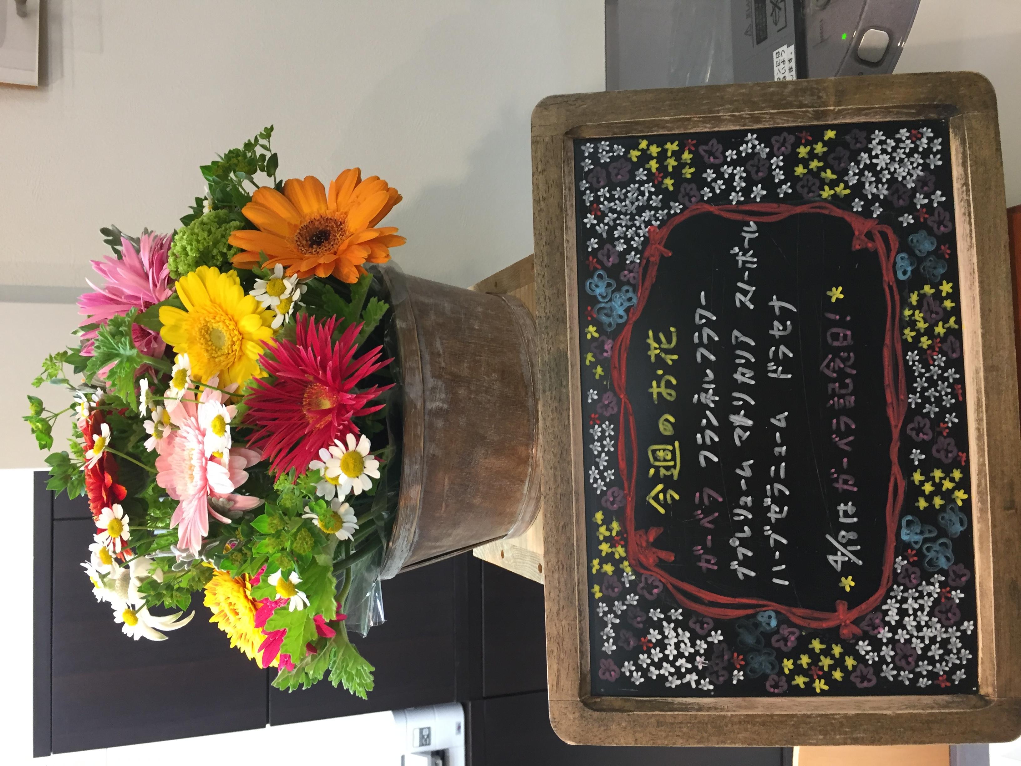 今週(4月13日〜)のお花