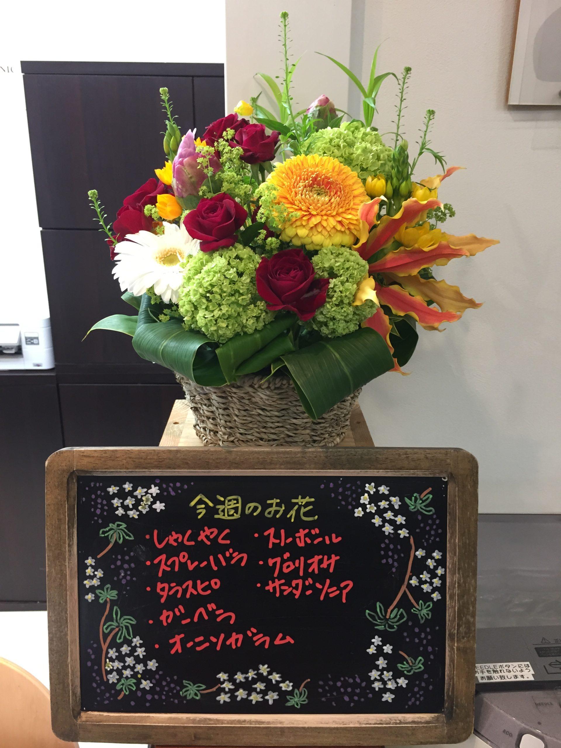 今週(5月11日〜)のお花