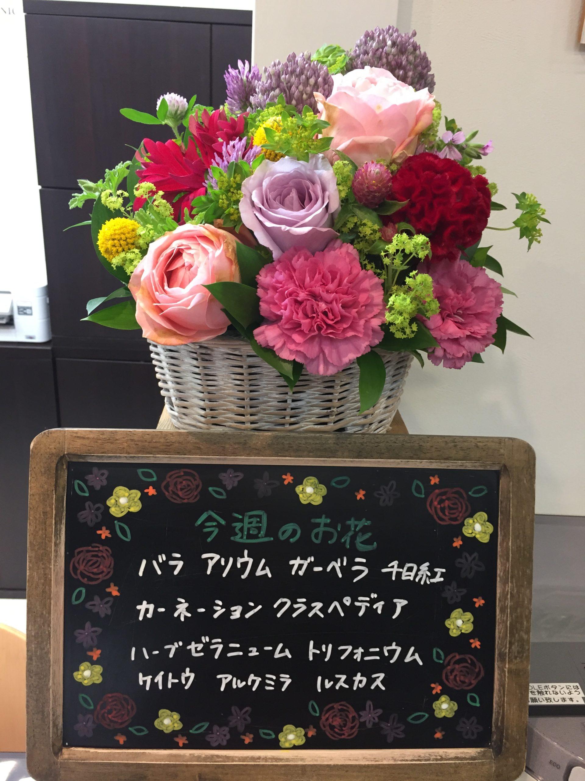 今週(5月25日〜)のお花