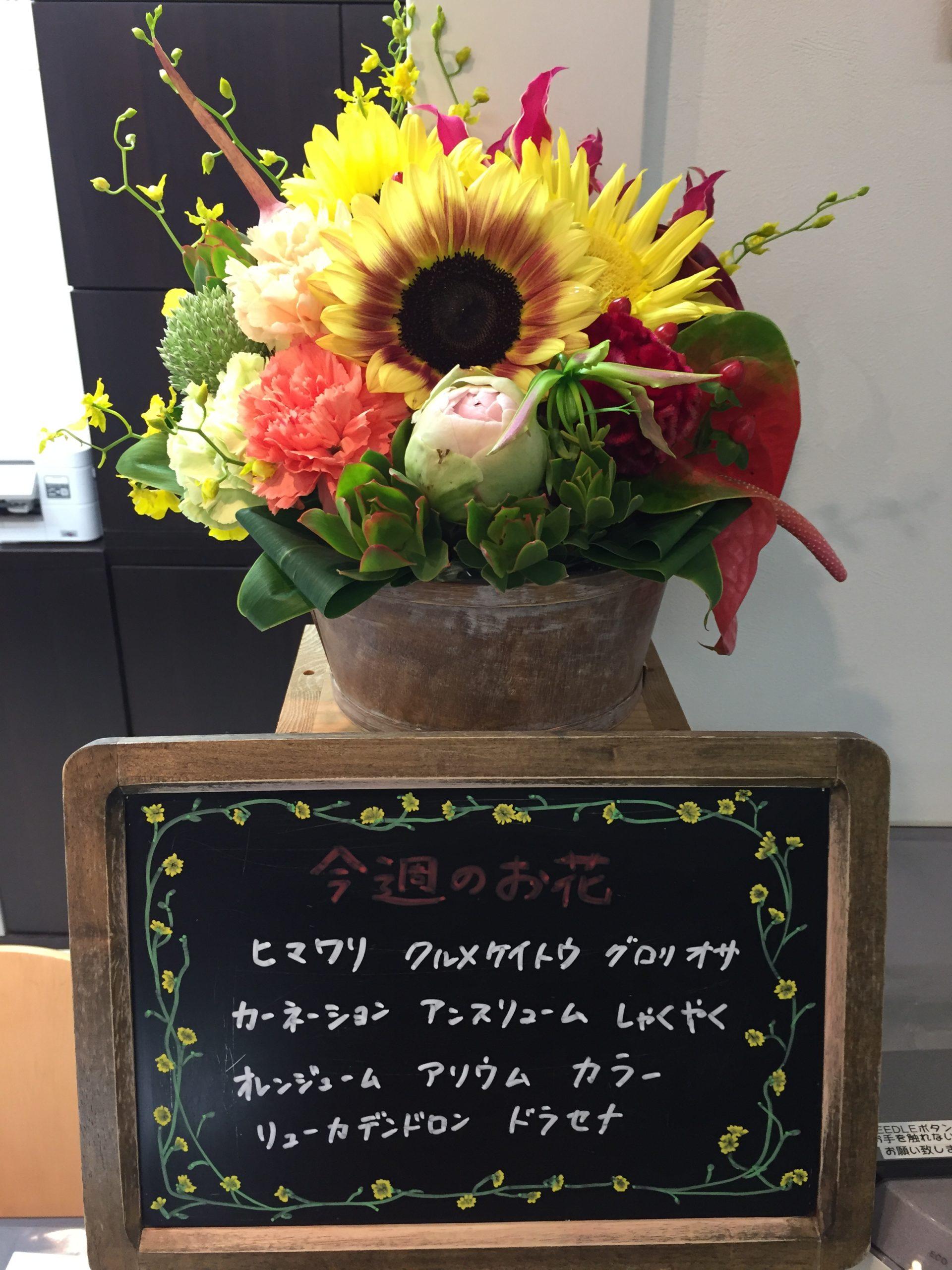 今週(6月1日〜)のお花