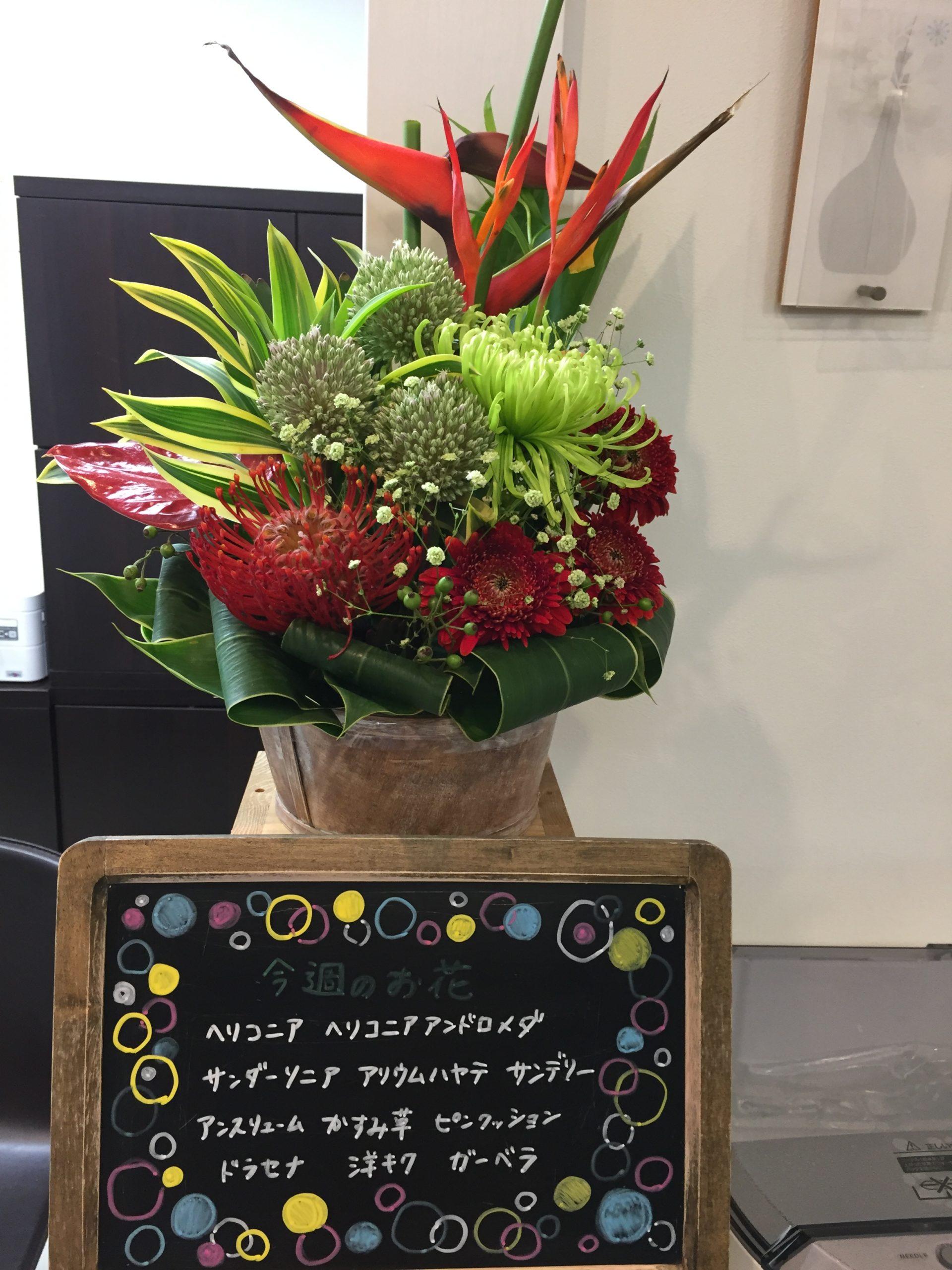 今週(7月27日〜)のお花