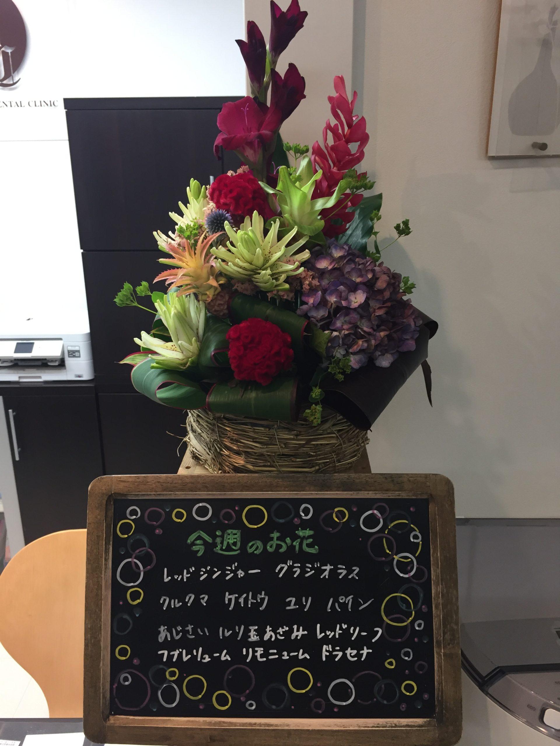今週(6月29日〜)のお花