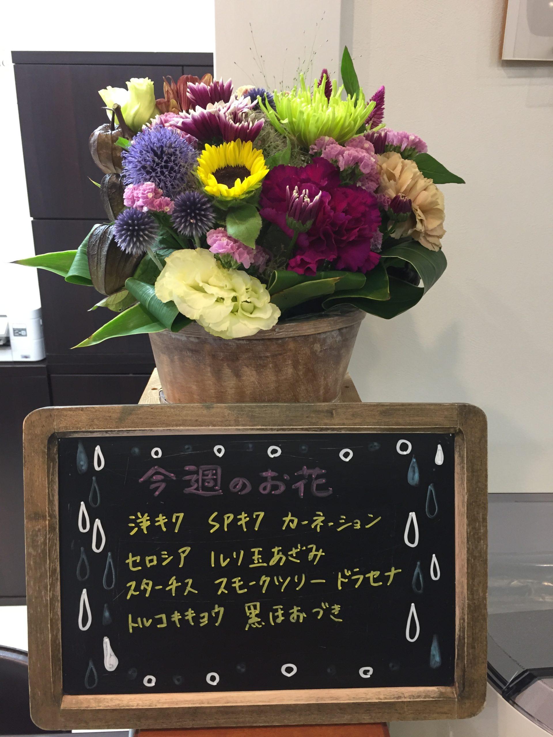 今週(7月13日〜)のお花