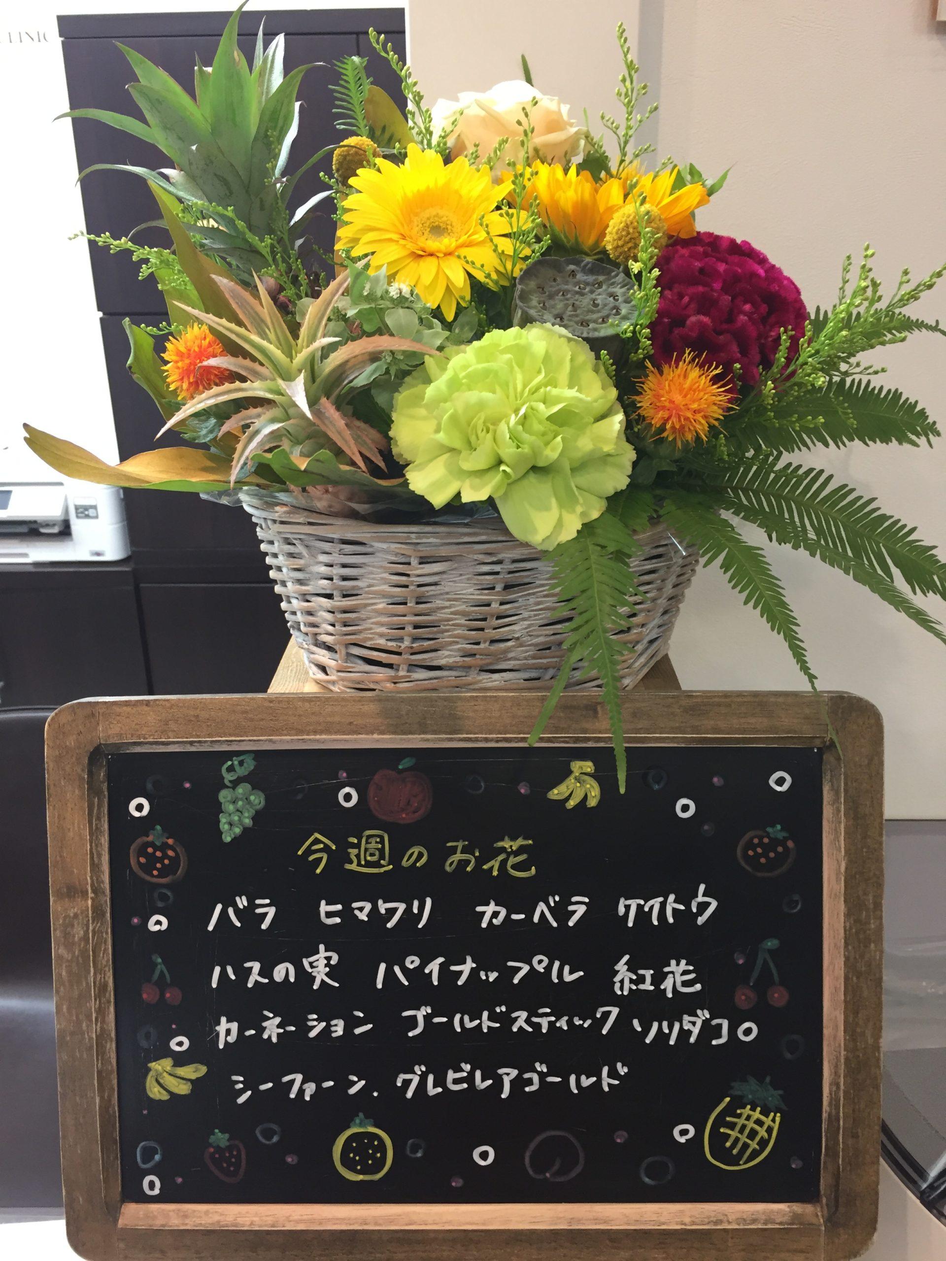 今週(7月20日〜)のお花