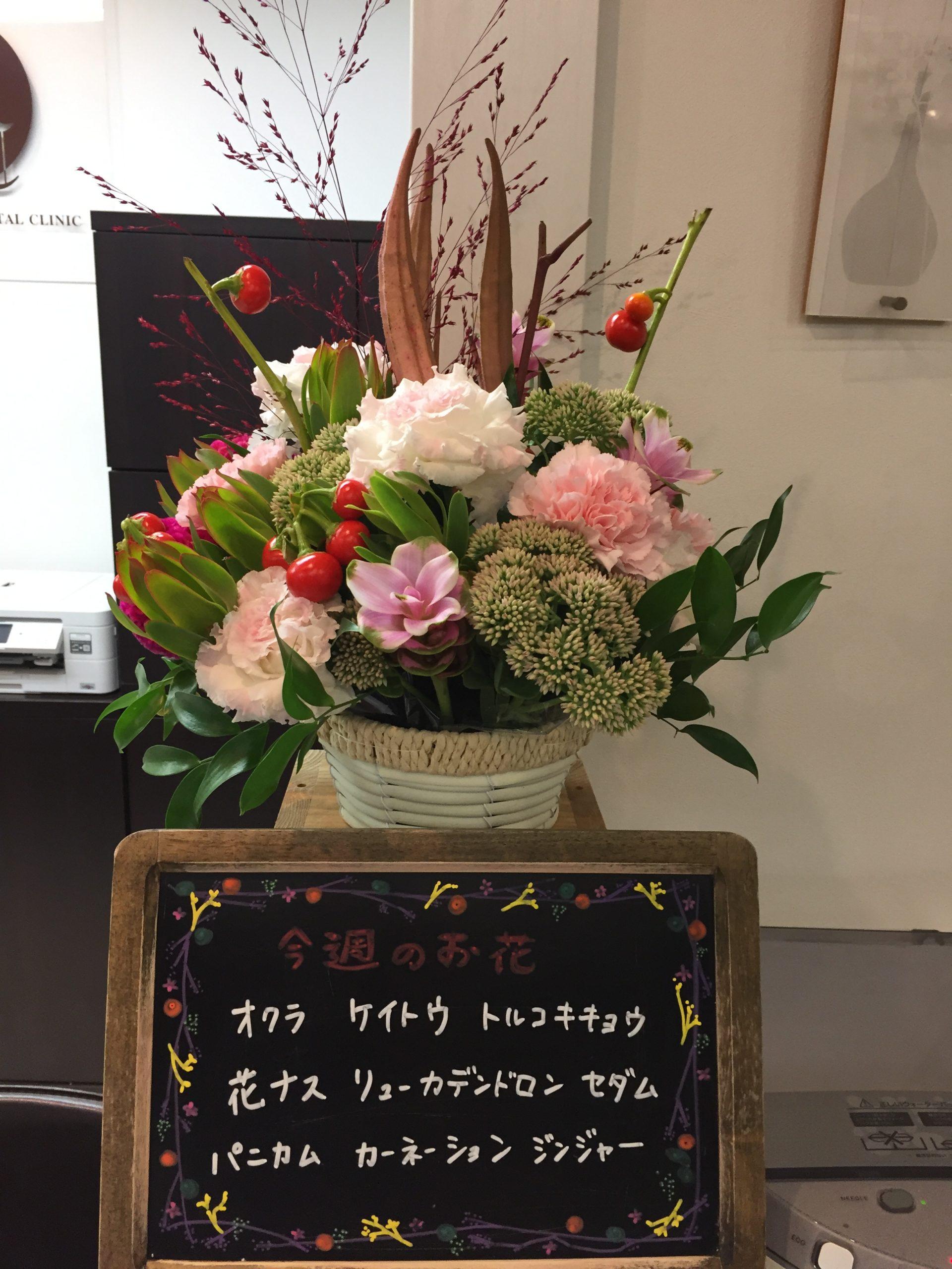 今週(8月24日〜)のお花