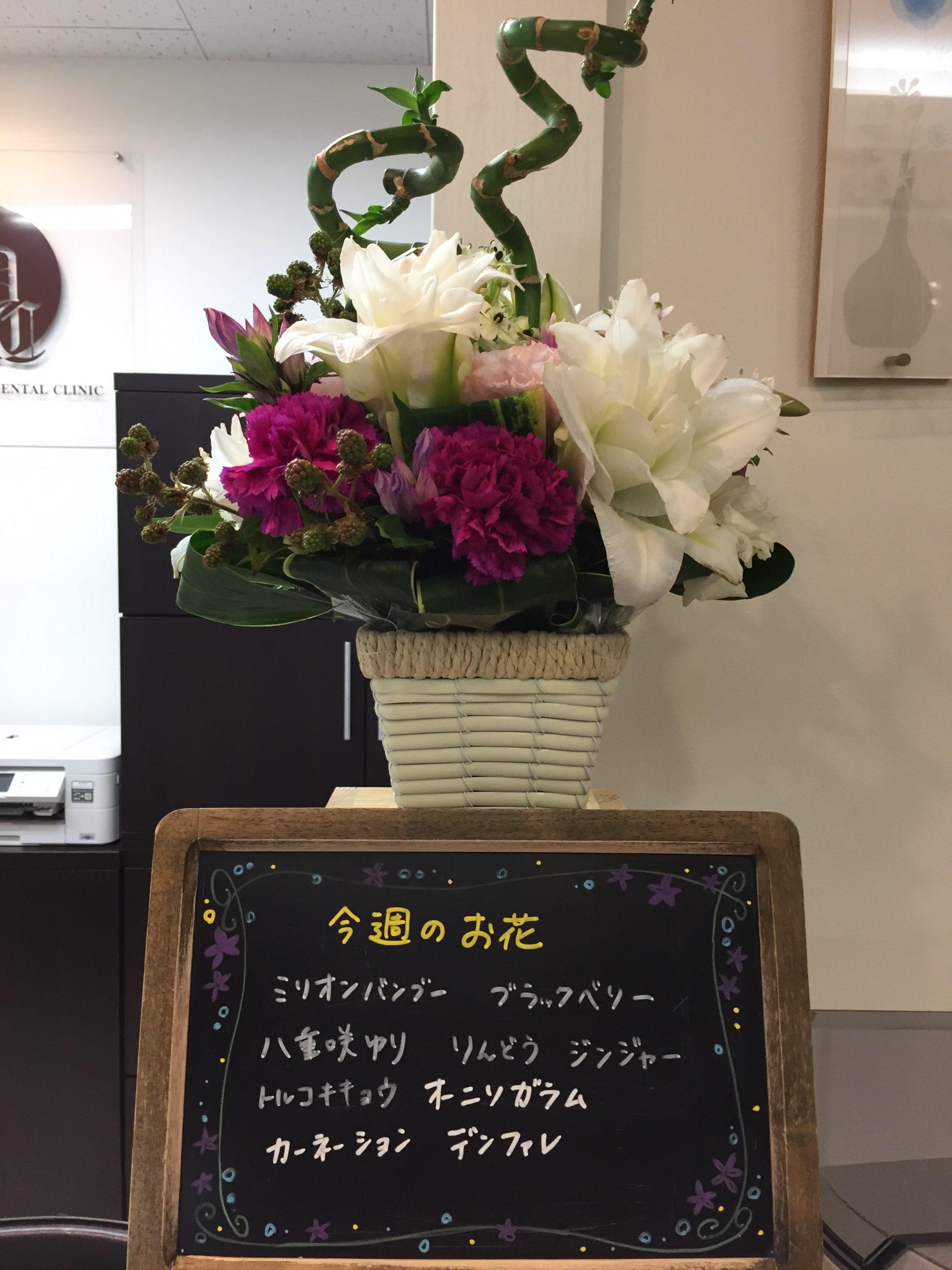 今週(8月3日〜)のお花