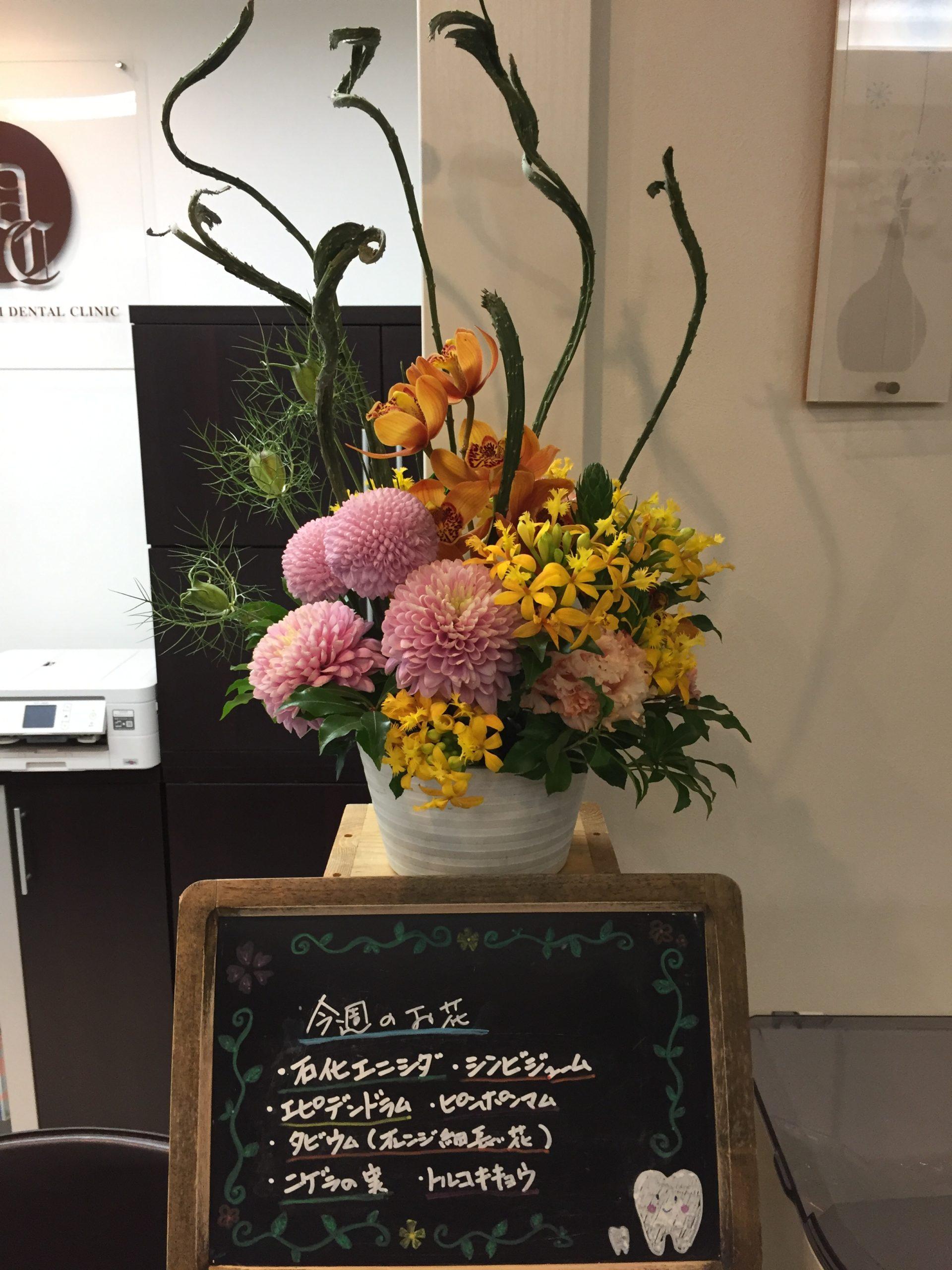 今週(2月15日〜)のお花