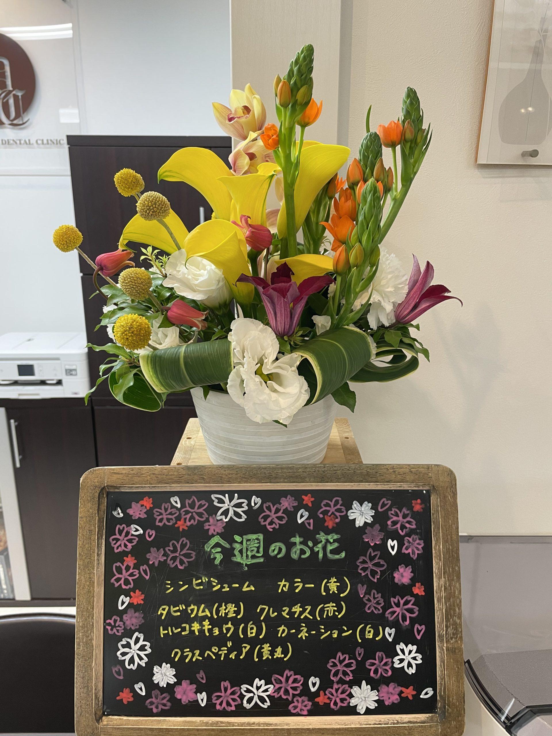 今週(4月5日〜)のお花
