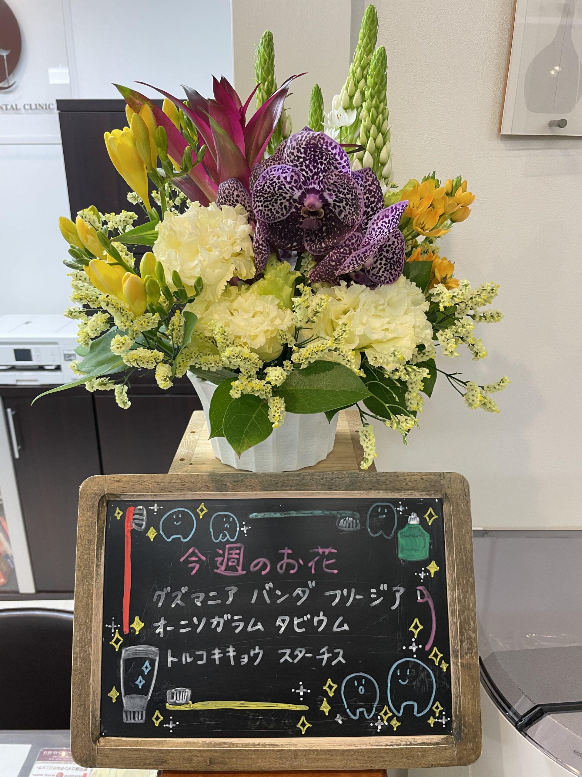 今週(4月19日〜)のお花