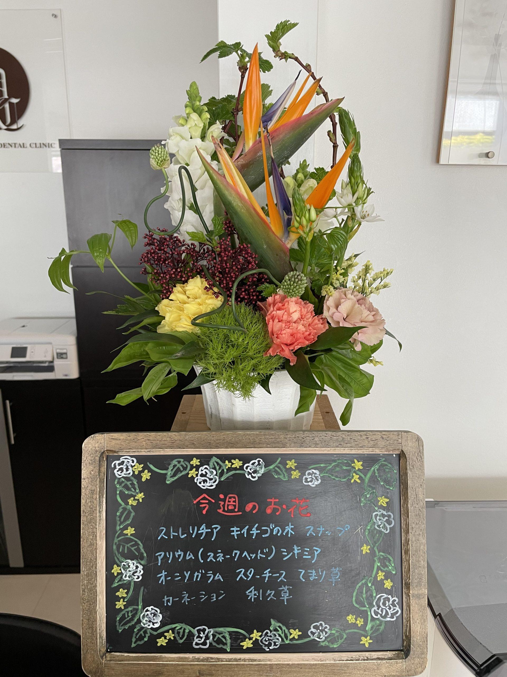 今週(4月12日〜)のお花