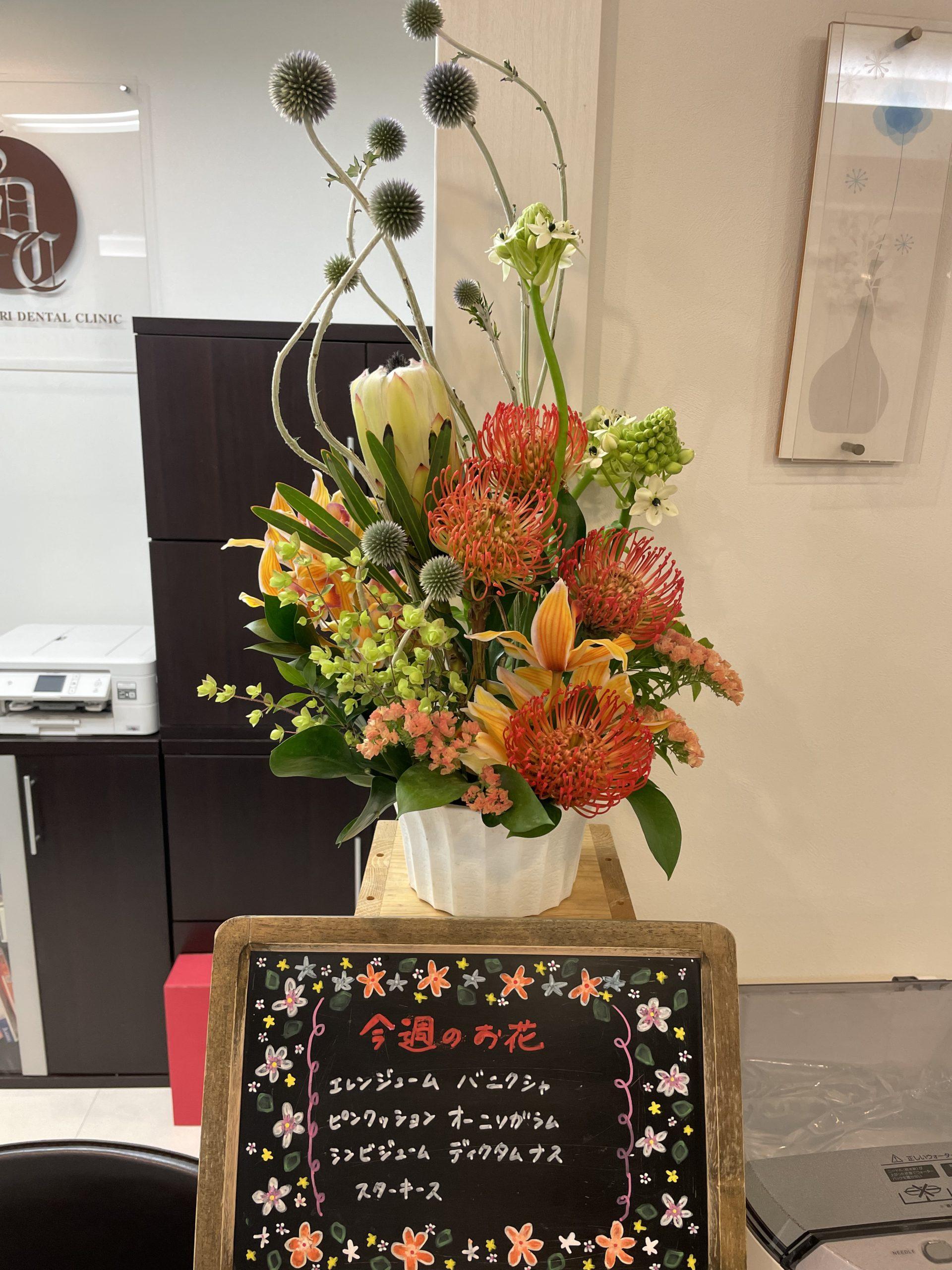 今週(6月21日〜)のお花