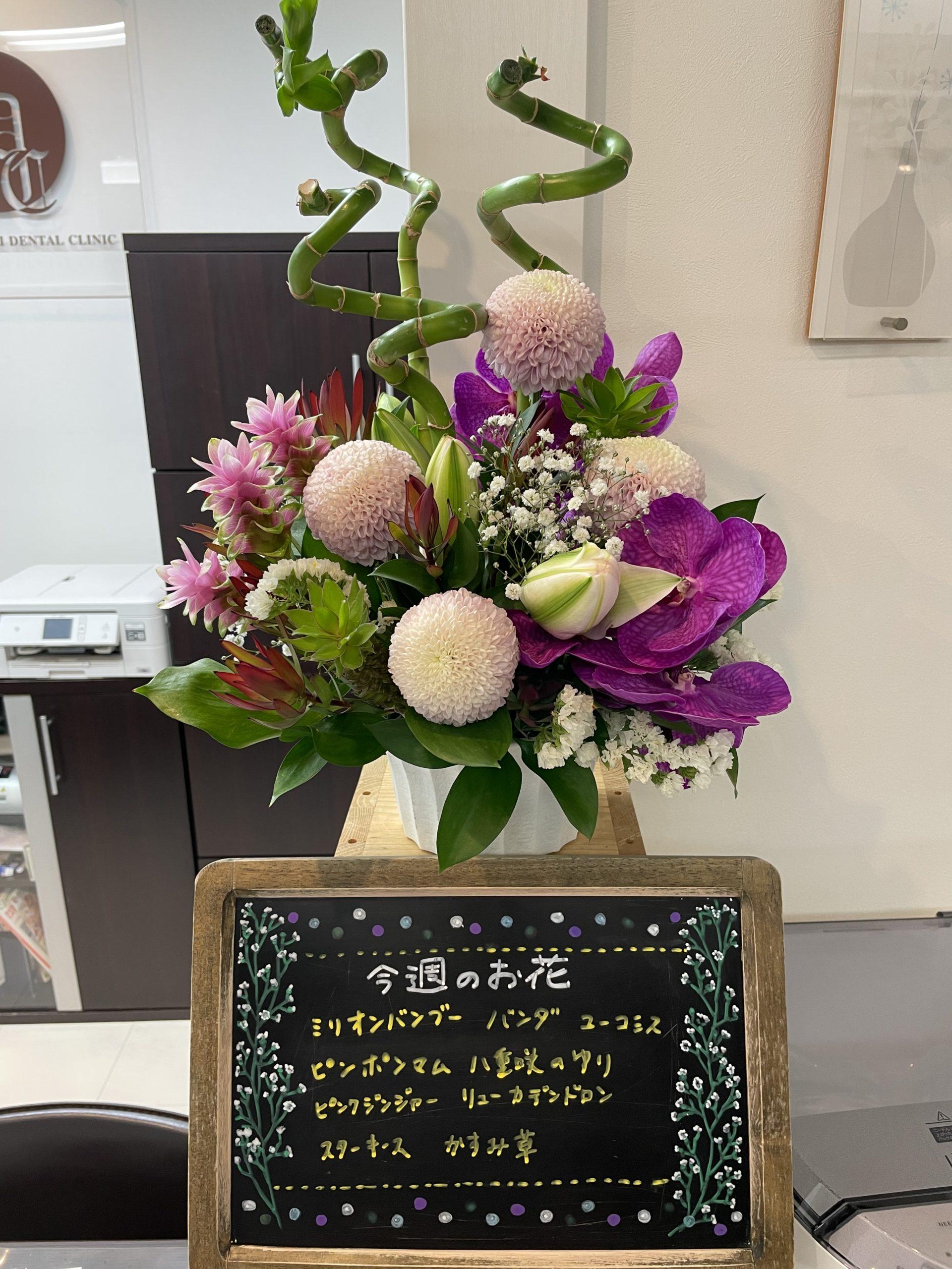 今週(6月28日〜)のお花