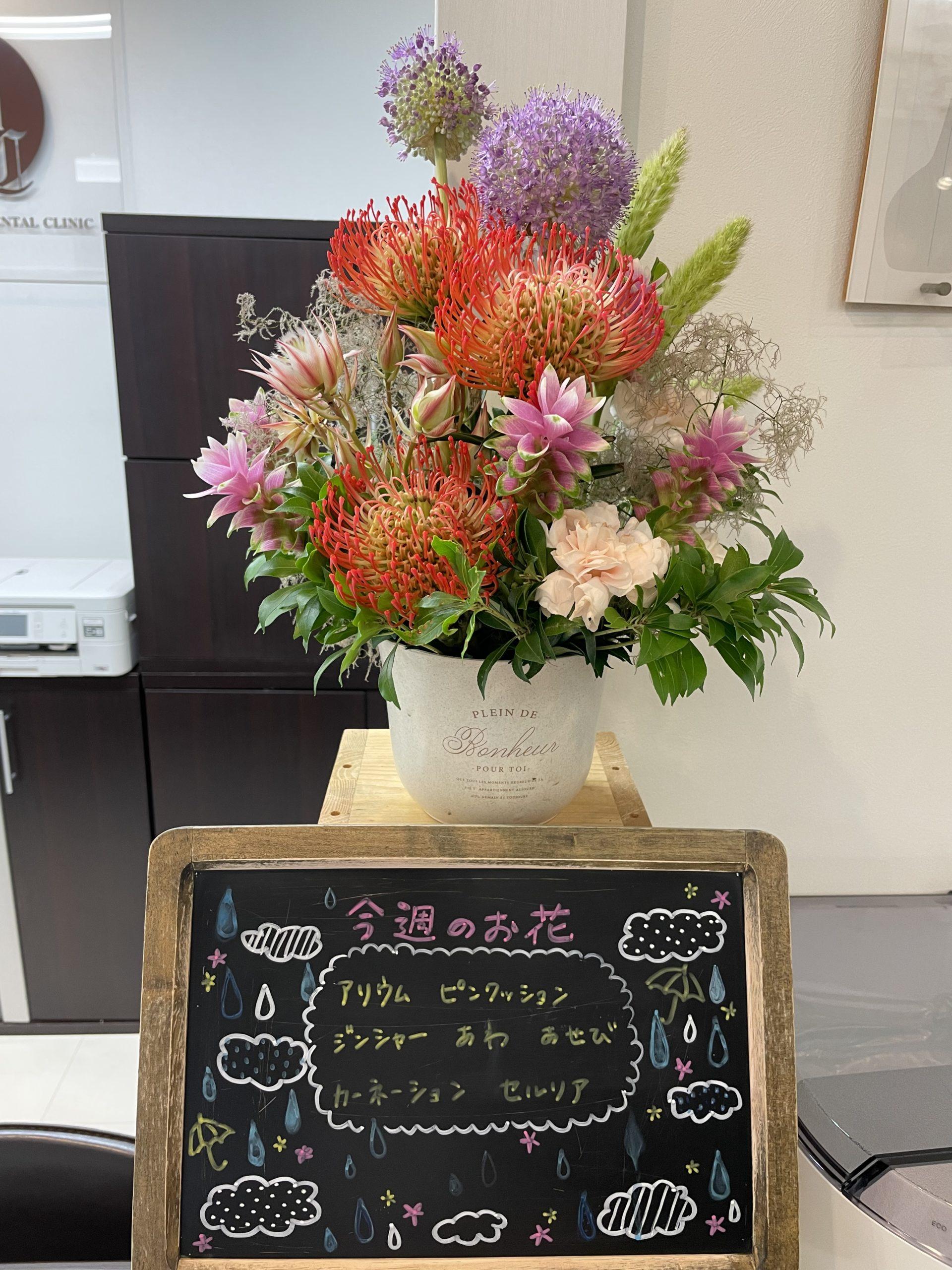 今週(7月12日〜)のお花