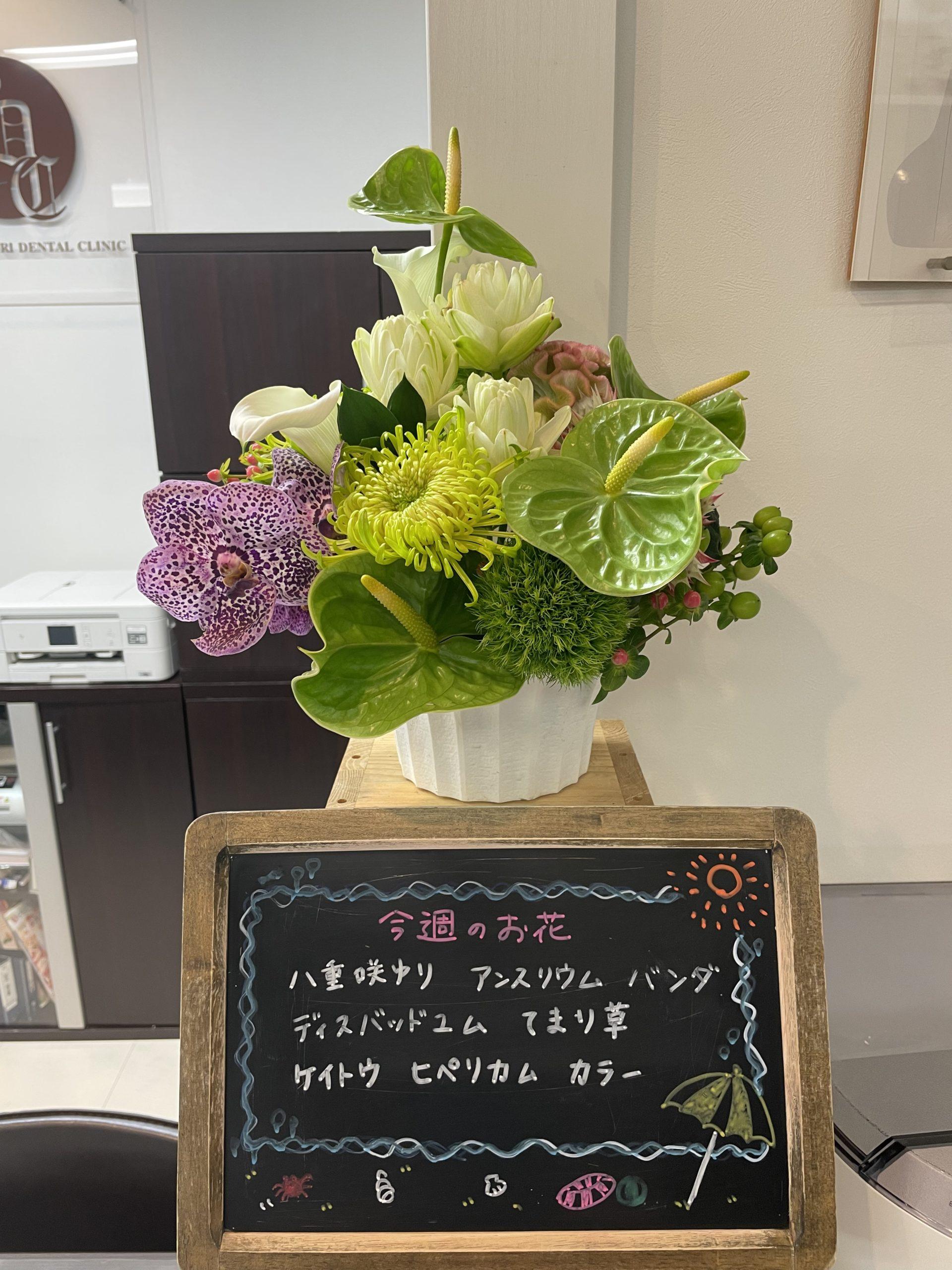 今週(7月19日〜)のお花