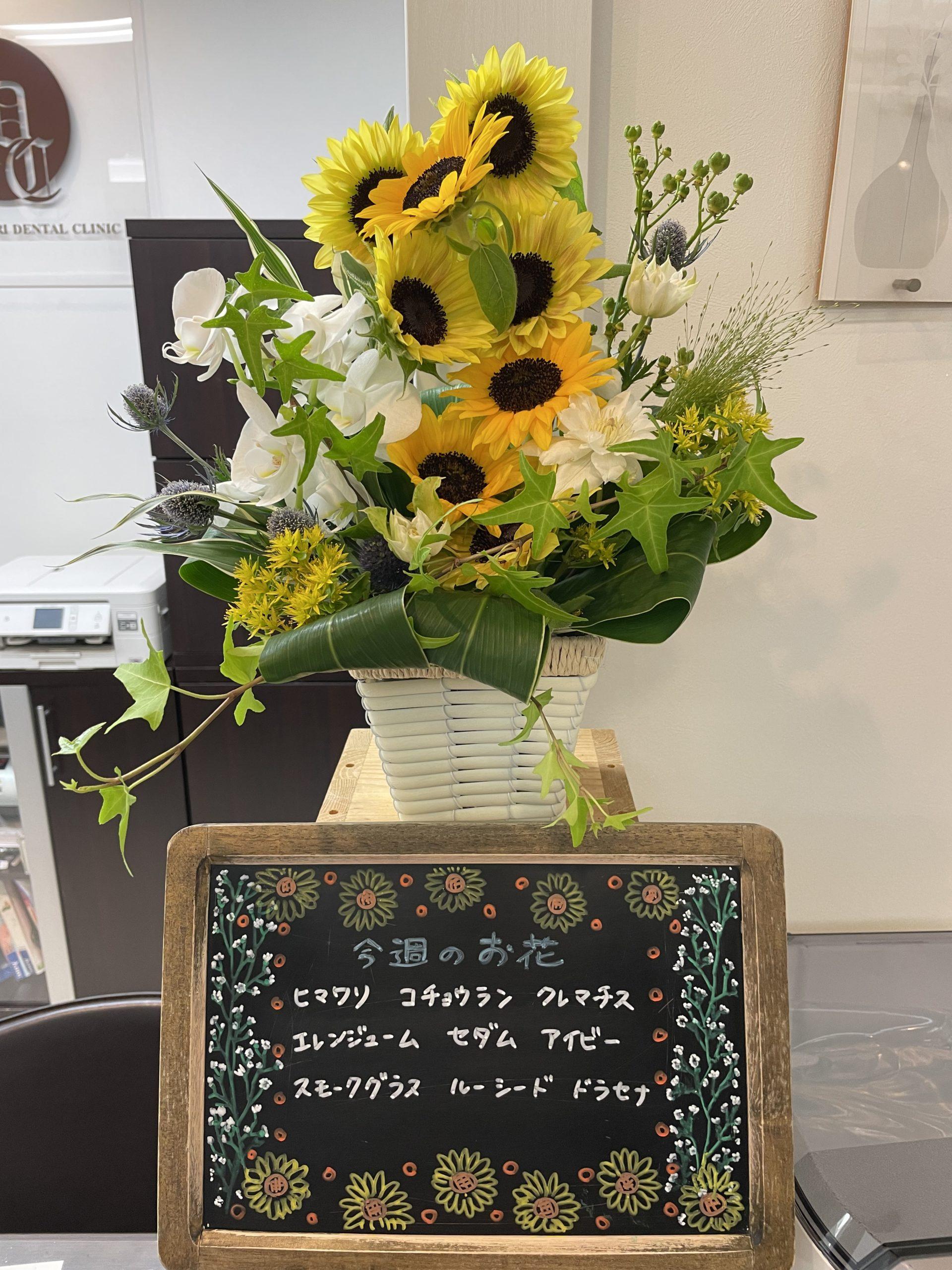 今週(7月5日〜)のお花