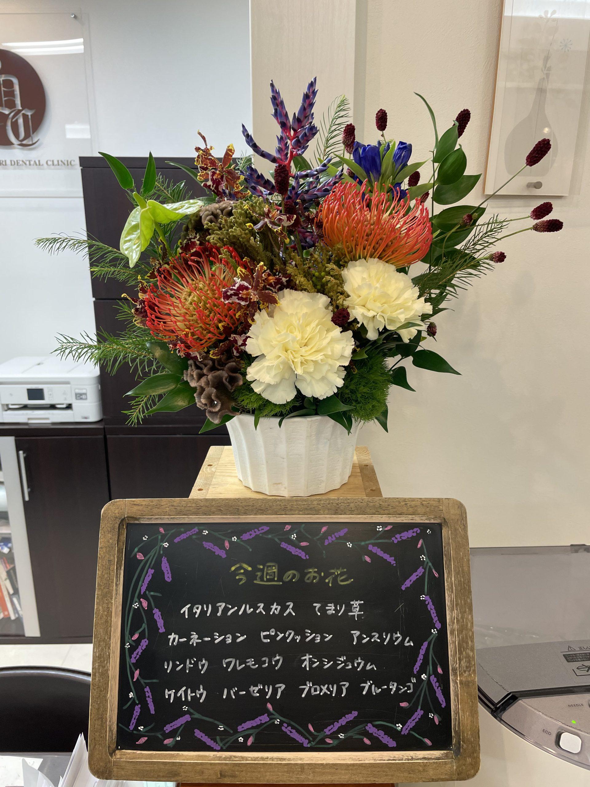 今週(9月13日〜)のお花
