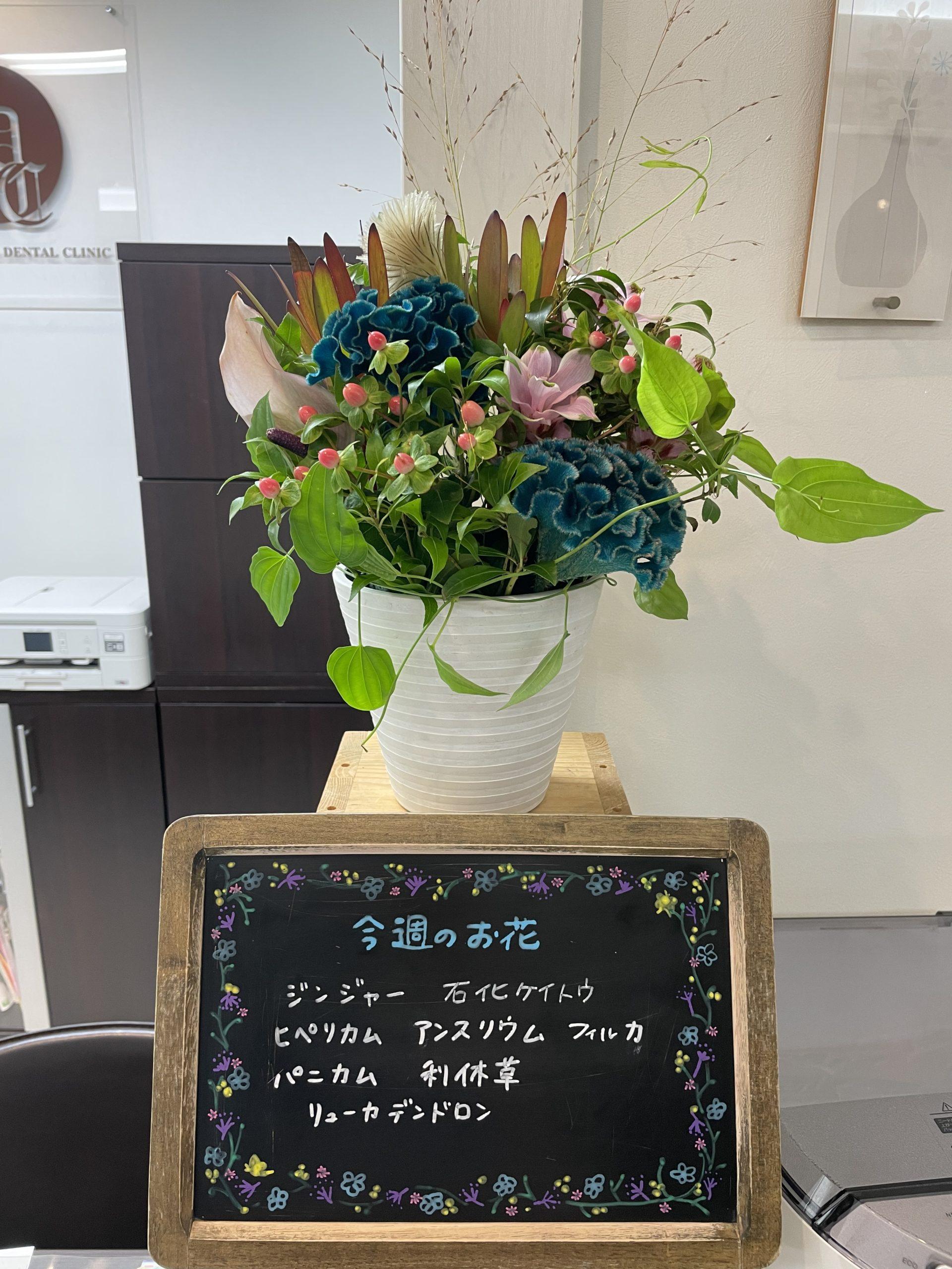 今週(8月30日〜)のお花